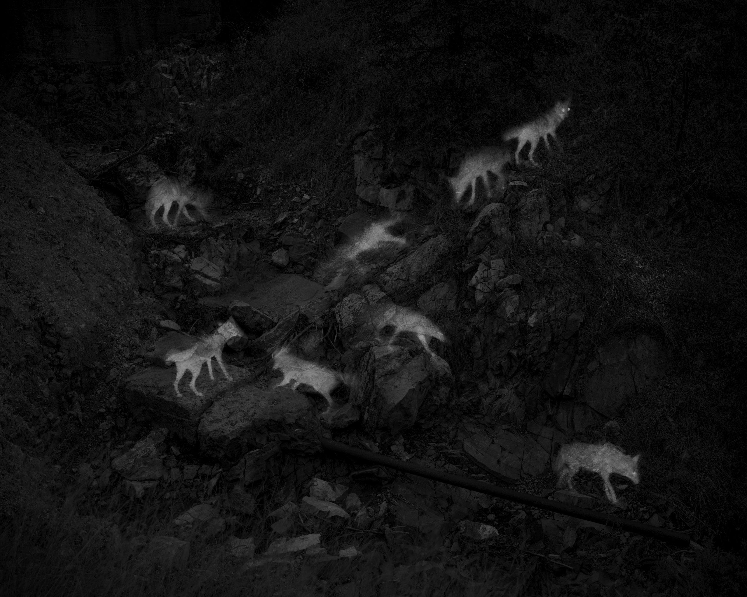 Photographer Alex Turner Featured in Lenscratch